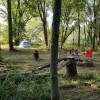 Harmony Lake-Tent-Creek Side West