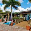 Vineyard & Palm studded Tent sites