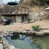 Hot Spring Pool & Cabin Cave