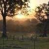 A/Hills working cattle farm