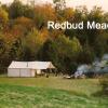 Redbud Meadow