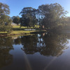 Down by a Dam at Bangalow