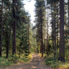 Satus Springs Hideaway