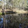 Kybong Bush Camp & Animal Sanctuary