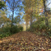 Away at Green Hill