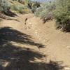 High Desert, Pinon Hills CA