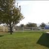 Horse Acres : Picnic Lawn
