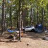 Heavener Runestone - Amp Camp (A1)