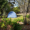 Sweet Almond Grove Campground 2