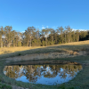 Stonepine Ridge: Dam view