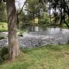 The Platypus Pool - Karuah River