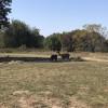 Dockley Ranch RV Site