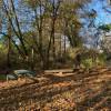 Creek Campsite - Rancho Comienzo