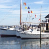 Chesapeake Cove Camping