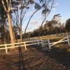 Wilder Pastures (Powered)