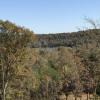 Nature Calls at Adler Farms