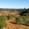 Red Deer Hills