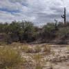 Serine desert. Plenty of space