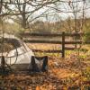 Camp Site @ Dharma Bums Eco Camp