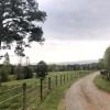 Foothills Farm (RV Sites)