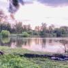Yarramundi Hawkesbury River
