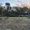 Bush Farm Camp by the Dam