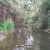 Dairy Camp - Flat Creek