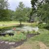 Hook Meadow Maples