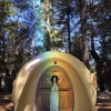 Forest Space Dome Home
