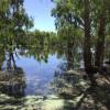 Lagoon Camping