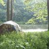 Rustic river front campsite #5