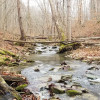 Vintage Creek