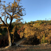Secluded West Sonoma launchpad
