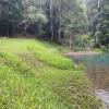 Dam Site Crystal Creek Ranch