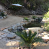 Private Spring Pool Oasis Sanctuary