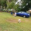 Moreton Bay Retreat - Pet Friendly
