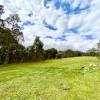 Children's Rates#100-acre woods (2)