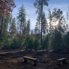 Meyers Meadow - Camp 23