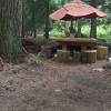 Bicycle Camping in the Island Woods