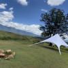Bulimah Sky Camp (Exclusivity)