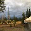 Base Camp Bigfork Yurt