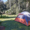 Camp in the Ocala National Forest