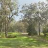 Noonameena - A bush sleeping place