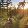 Cosmo's Camp: Campsite #3