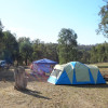FigTree Gully Campsite 3