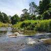 Agnes Views - River Flats - CLOSED
