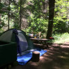 #15A Tent Camping Creek View