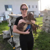 A night with Baby Goats!!! <3