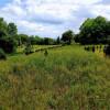 Organic Farm & Forest