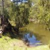 Creek Weir